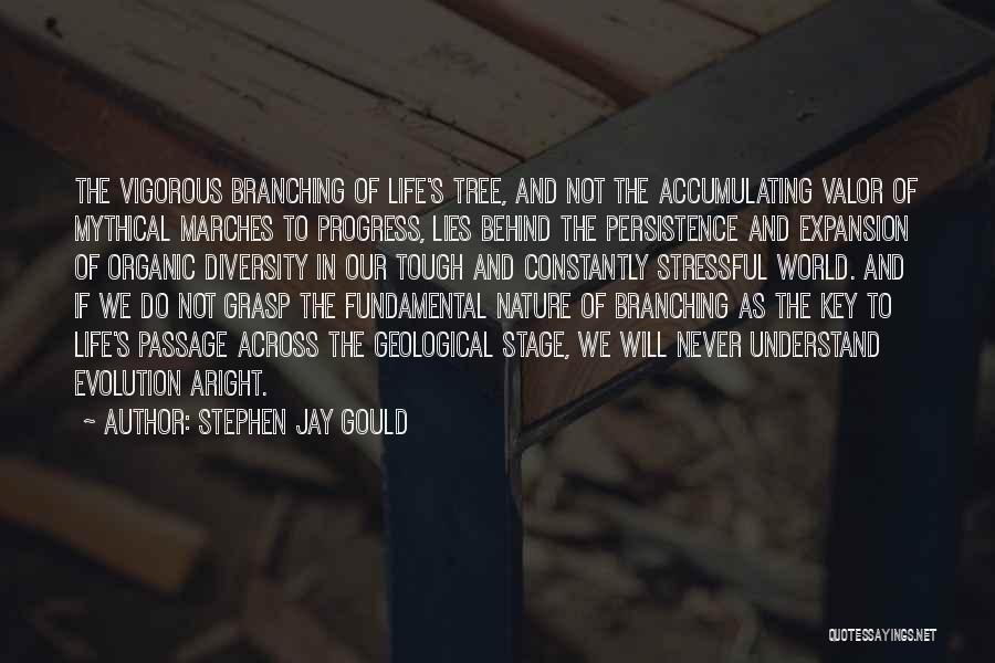 Tree And Quotes By Stephen Jay Gould