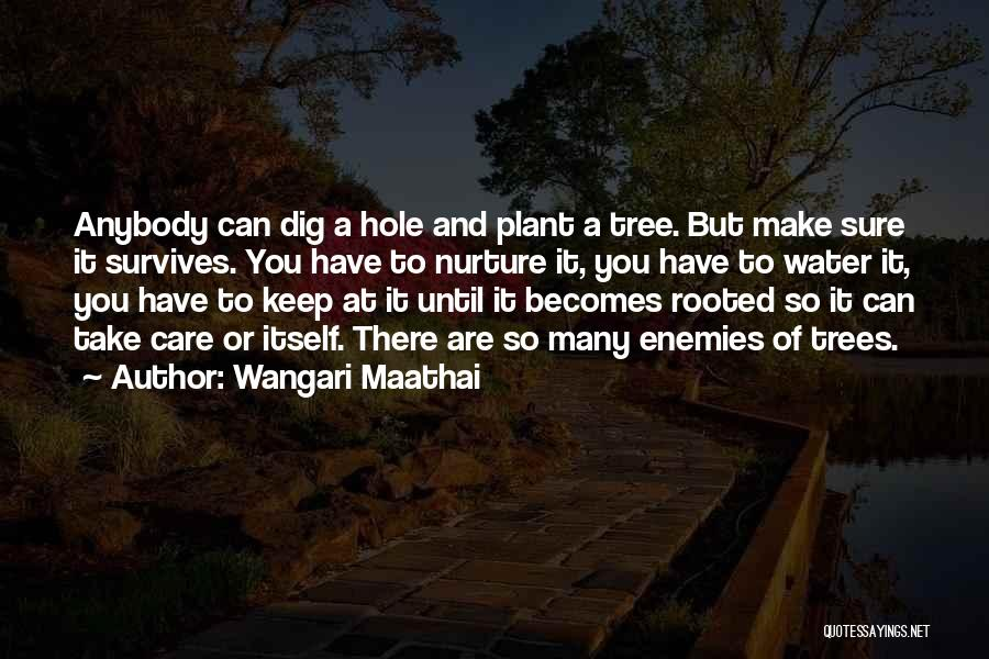 Tree And Quotes By Wangari Maathai