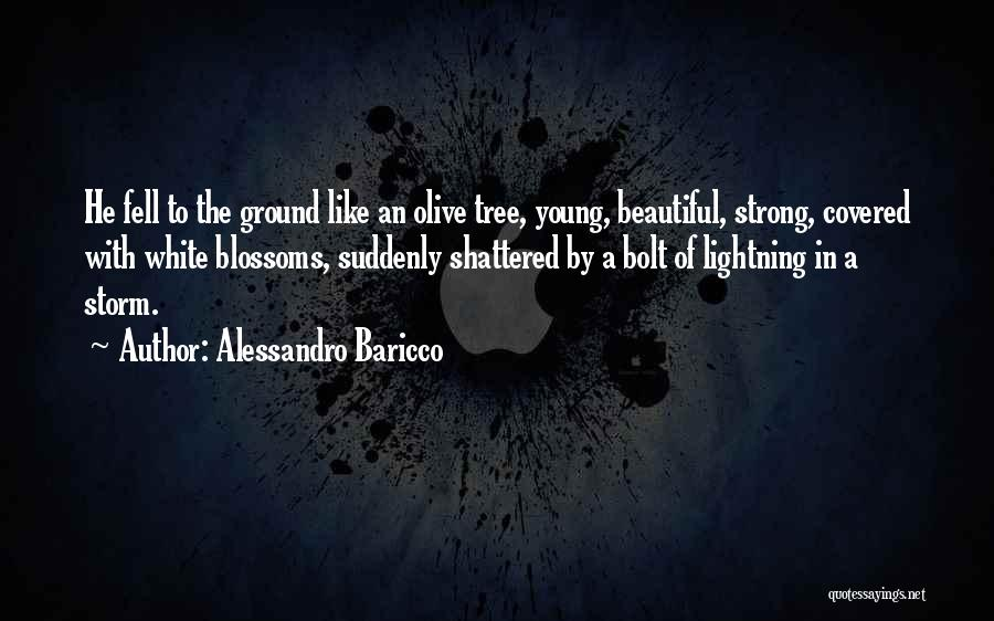 Tree Blossoms Quotes By Alessandro Baricco