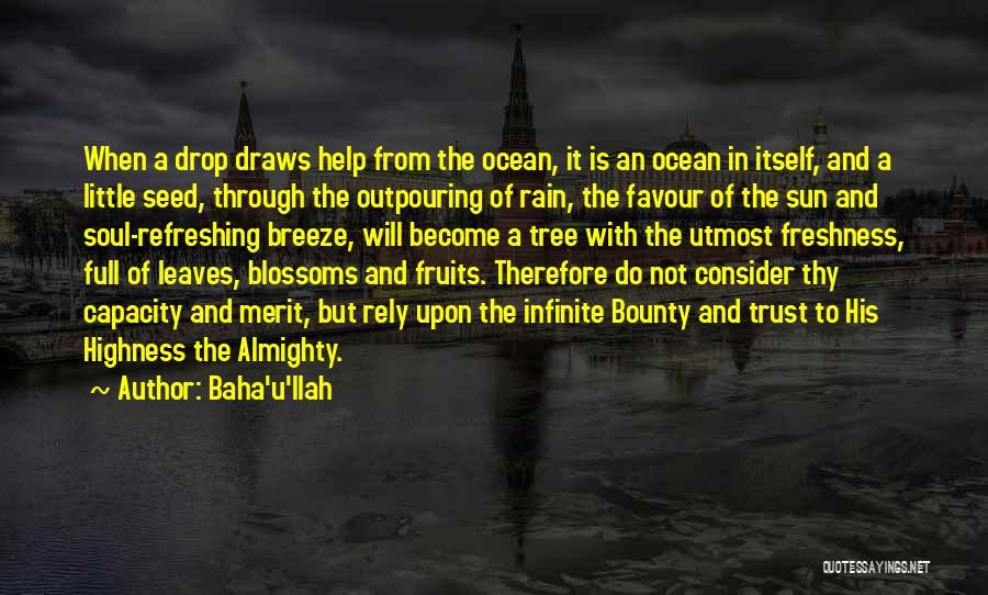 Tree Blossoms Quotes By Baha'u'llah