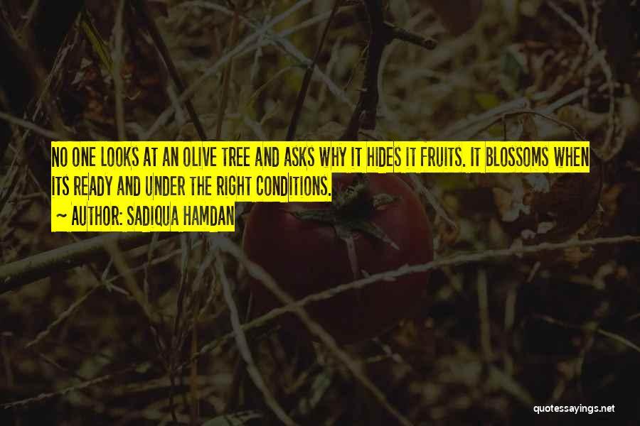 Tree Blossoms Quotes By Sadiqua Hamdan