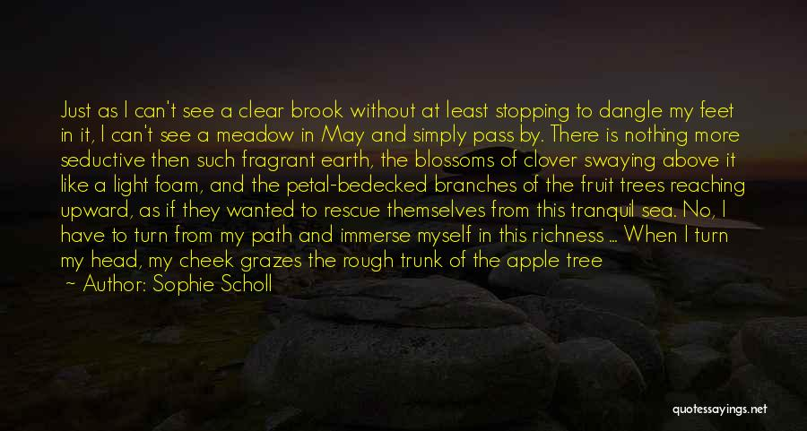Tree Blossoms Quotes By Sophie Scholl