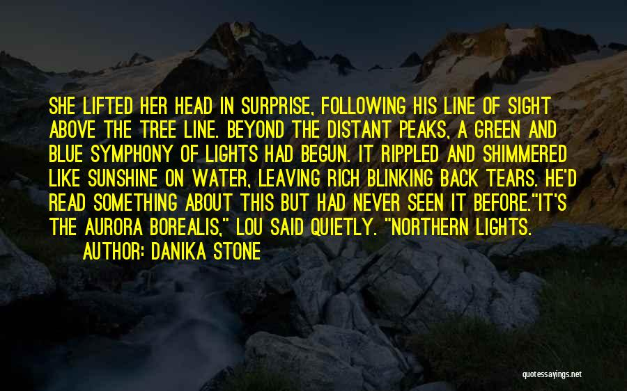 Tree With Lights Quotes By Danika Stone