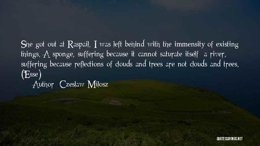 Trees And Clouds Quotes By Czeslaw Milosz