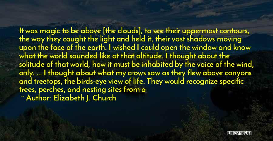 Trees And Clouds Quotes By Elizabeth J. Church