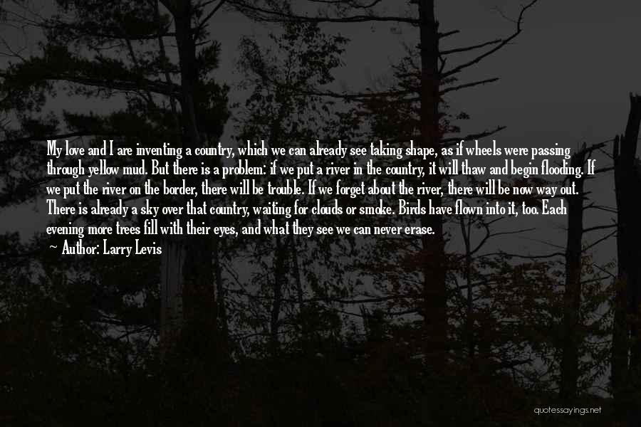 Trees And Clouds Quotes By Larry Levis