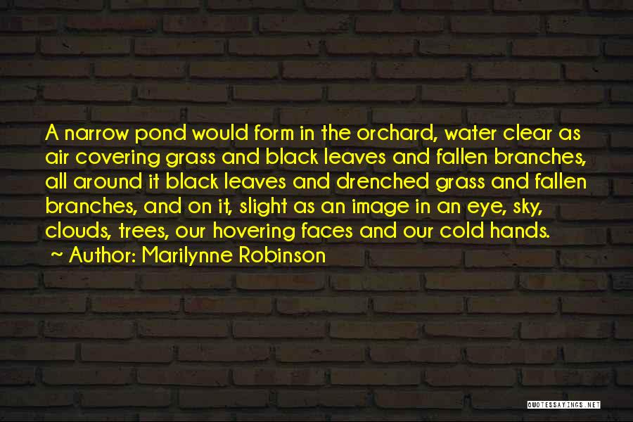 Trees And Clouds Quotes By Marilynne Robinson