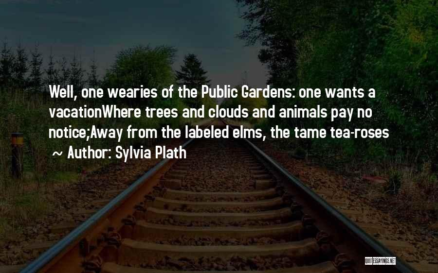 Trees And Clouds Quotes By Sylvia Plath