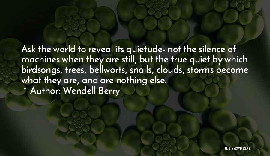 Trees And Clouds Quotes By Wendell Berry