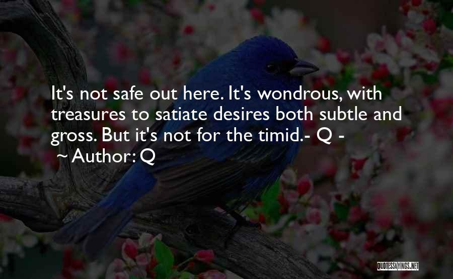 Trek Quotes By Q