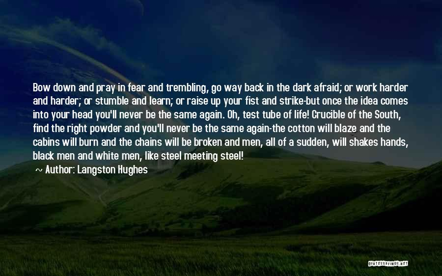 Trembling Quotes By Langston Hughes