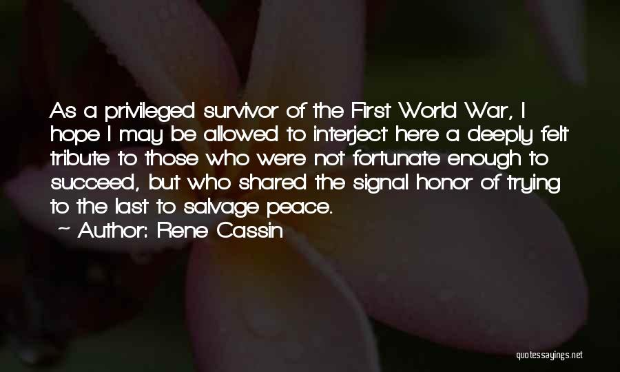 Tribute Quotes By Rene Cassin