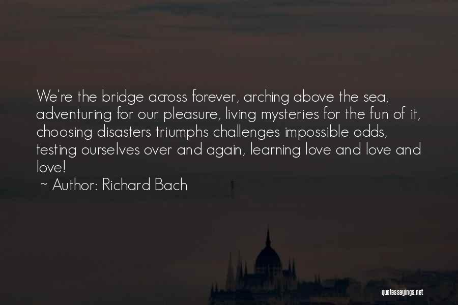 Triumphs Quotes By Richard Bach