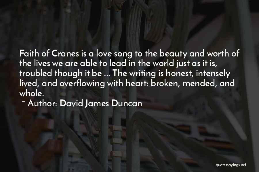 Troubled Love Quotes By David James Duncan