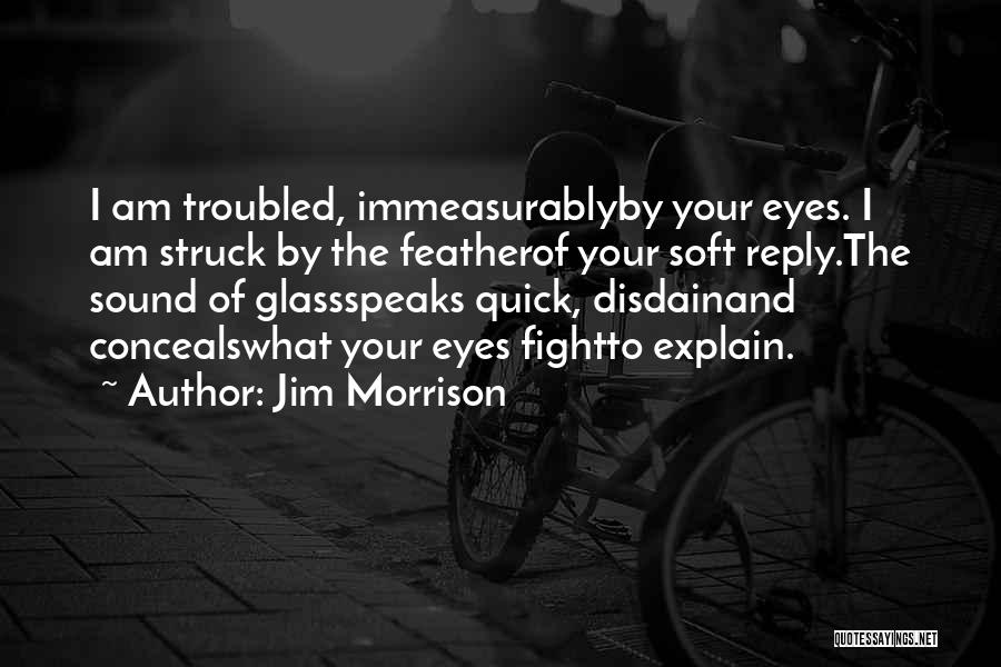 Troubled Love Quotes By Jim Morrison