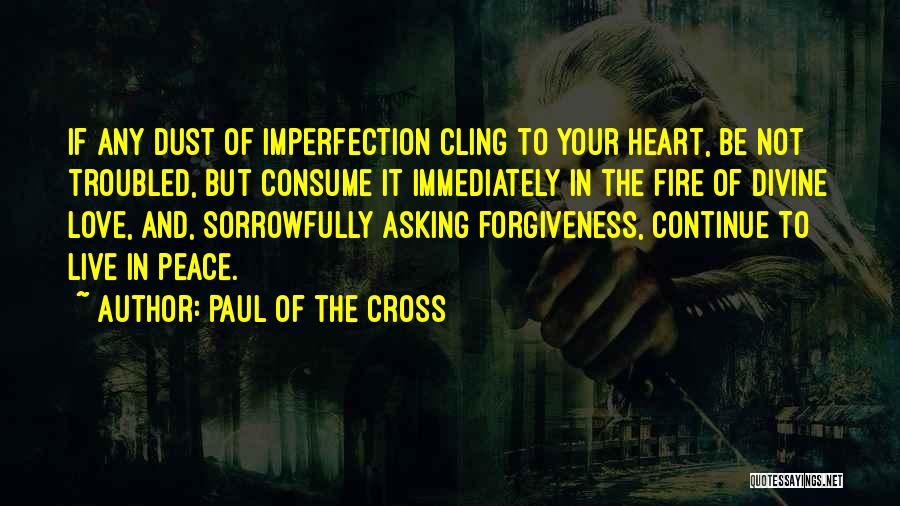 Troubled Love Quotes By Paul Of The Cross