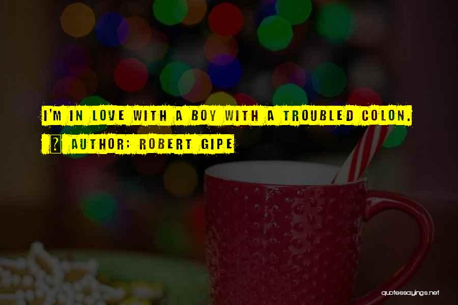 Troubled Love Quotes By Robert Gipe