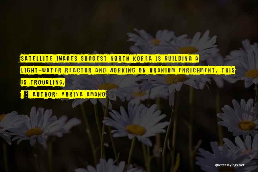 Troubling Quotes By Yukiya Amano
