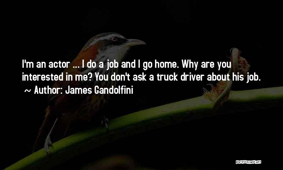 Truck Driver Quotes By James Gandolfini