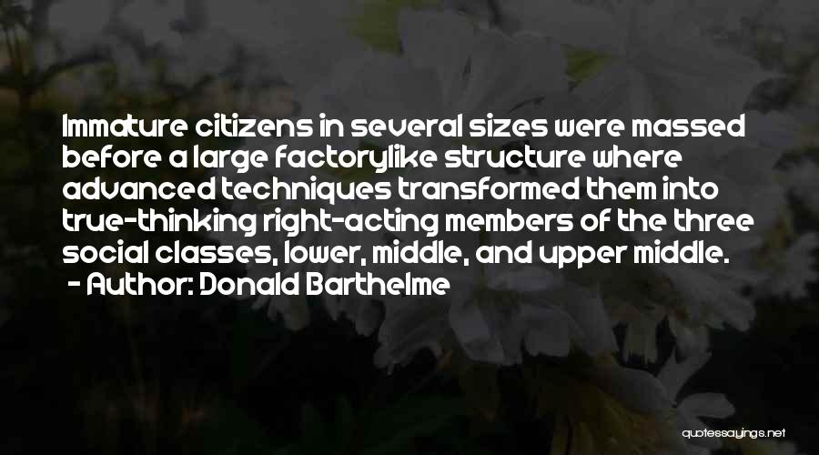 True And Funny Quotes By Donald Barthelme