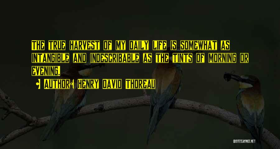 True Daily Life Quotes By Henry David Thoreau