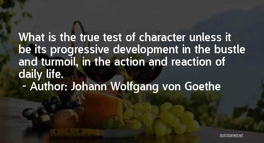 True Daily Life Quotes By Johann Wolfgang Von Goethe