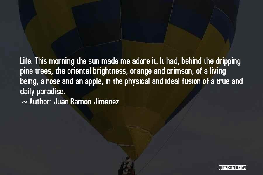 True Daily Life Quotes By Juan Ramon Jimenez
