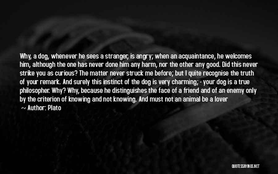True Good Friend Quotes By Plato