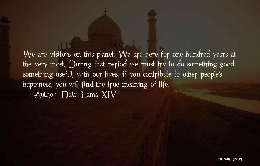 True Meaning Of Happiness Quotes By Dalai Lama XIV