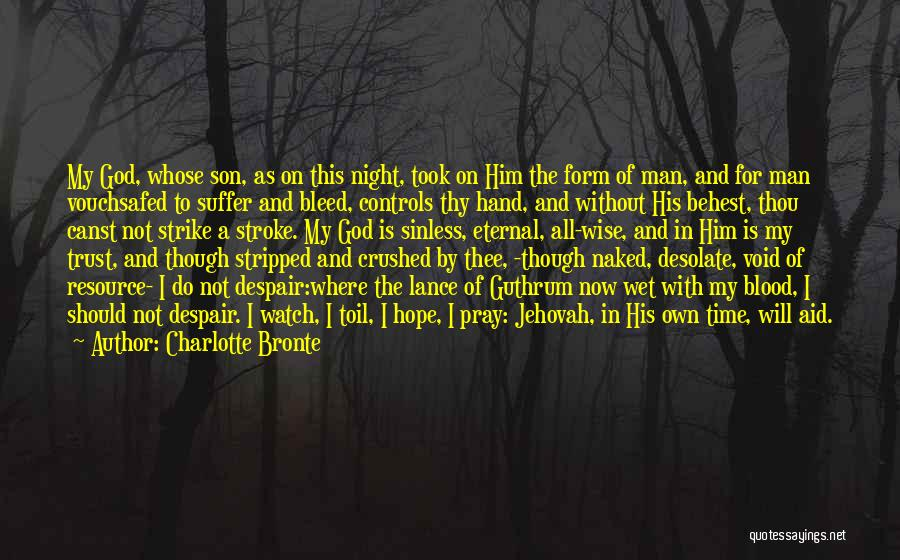 Trust In Him Quotes By Charlotte Bronte