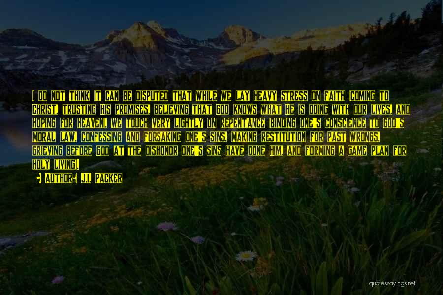 Trusting God's Plan Quotes By J.I. Packer