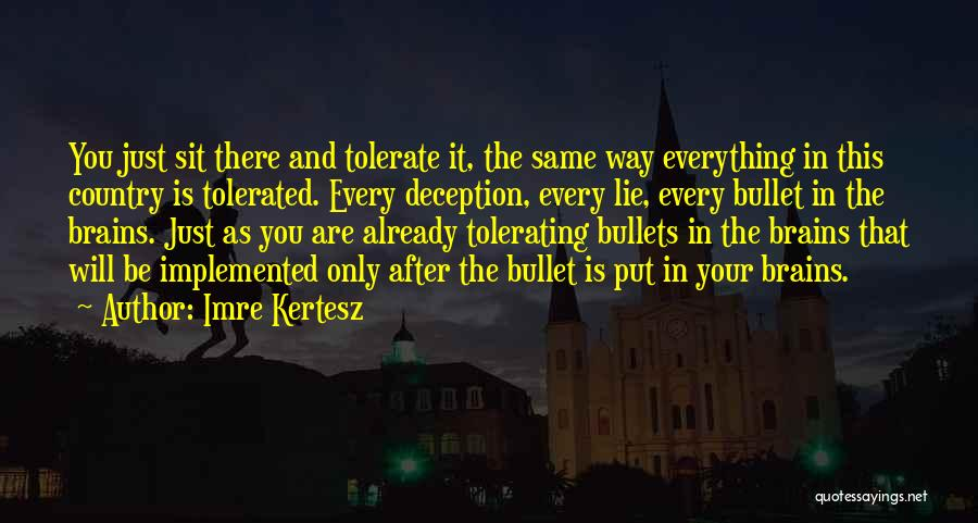 Truth In Government Quotes By Imre Kertesz