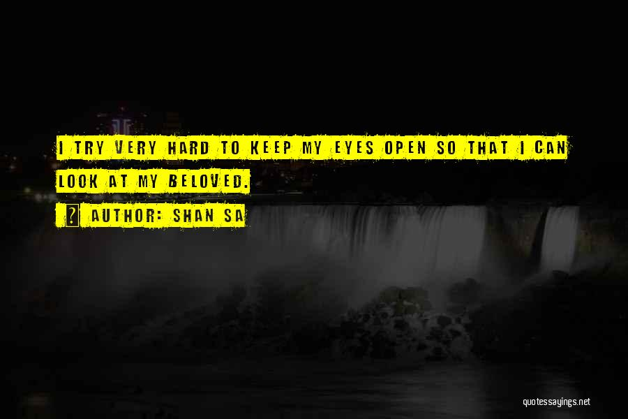 Try Hard Love Quotes By Shan Sa
