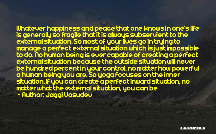 Trying To Be Perfect Quotes By Jaggi Vasudev