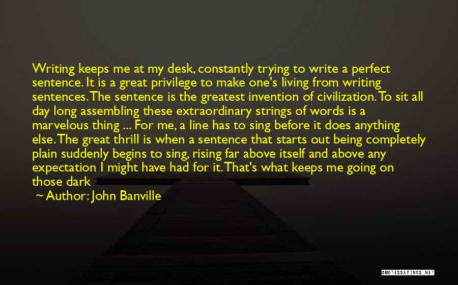 Trying To Be Perfect Quotes By John Banville