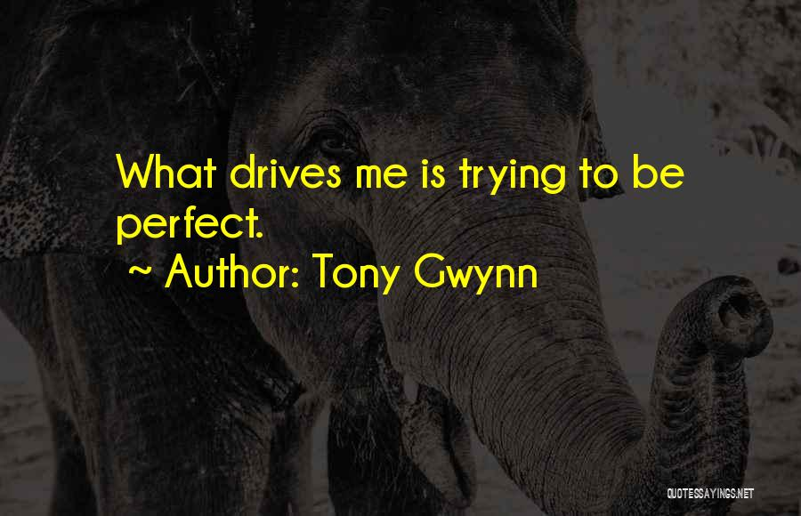 Trying To Be Perfect Quotes By Tony Gwynn