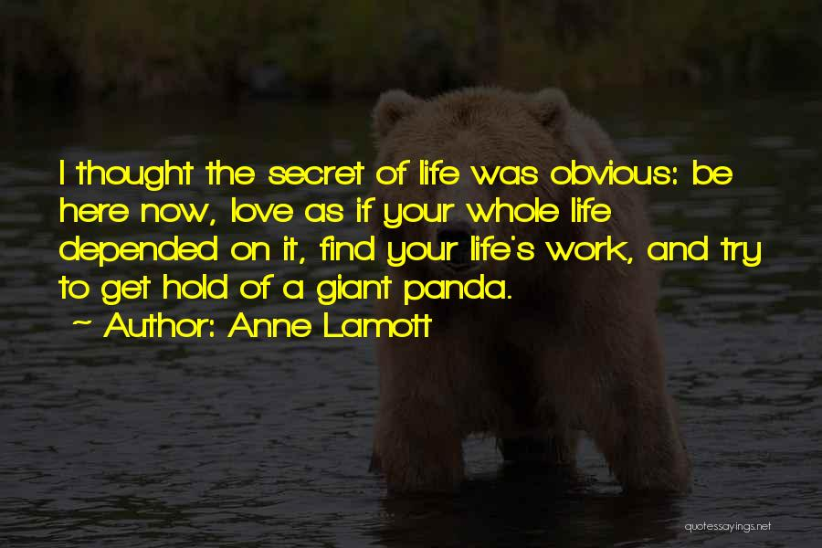 Trying To Hold Onto Love Quotes By Anne Lamott