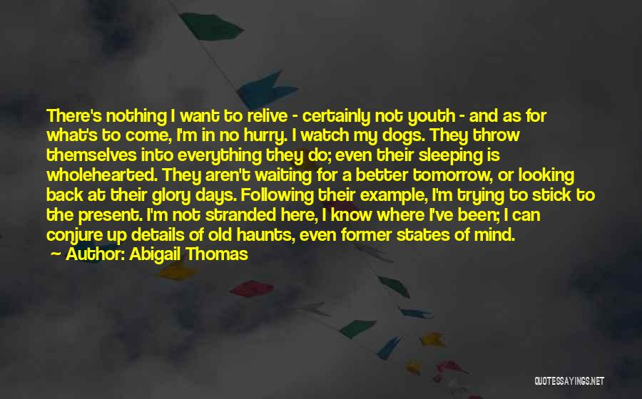 Trying To Relive The Past Quotes By Abigail Thomas