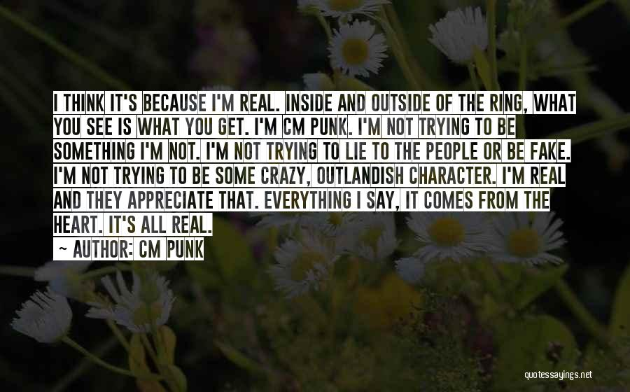 Trying To Say Something Quotes By CM Punk