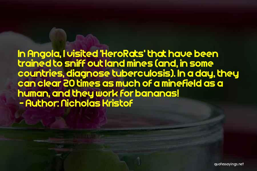 Tuberculosis Quotes By Nicholas Kristof