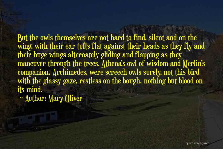 Tufts Quotes By Mary Oliver