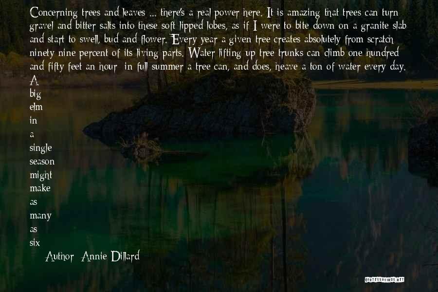 Tulip Quotes By Annie Dillard
