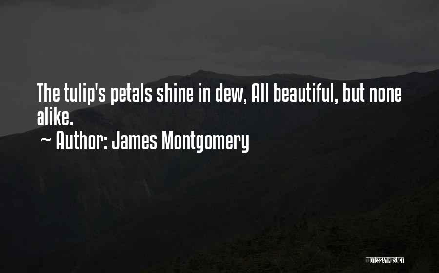 Tulip Quotes By James Montgomery