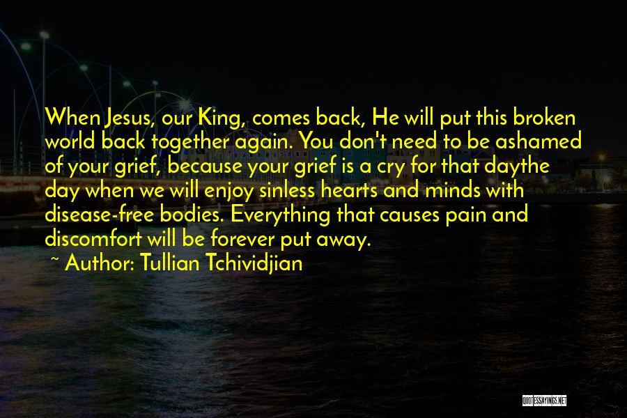 Tullian Tchividjian Quotes 1050828