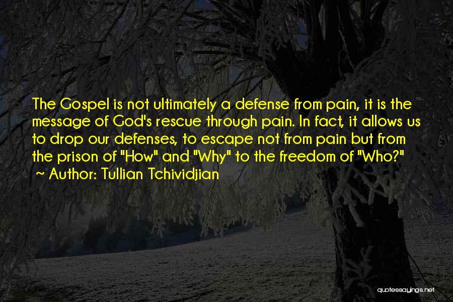 Tullian Tchividjian Quotes 124236