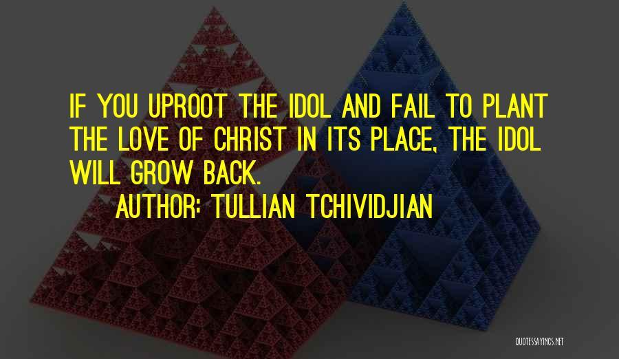 Tullian Tchividjian Quotes 1400900