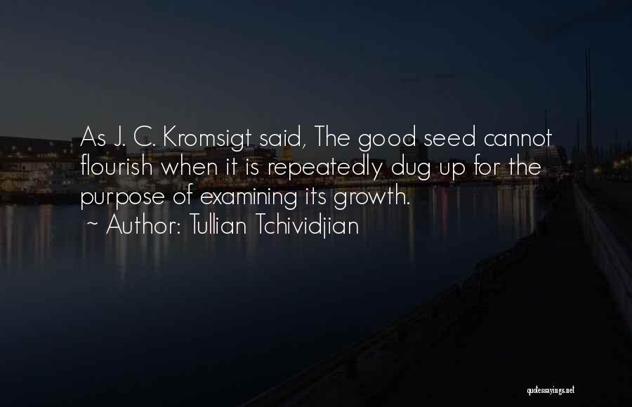 Tullian Tchividjian Quotes 1969045