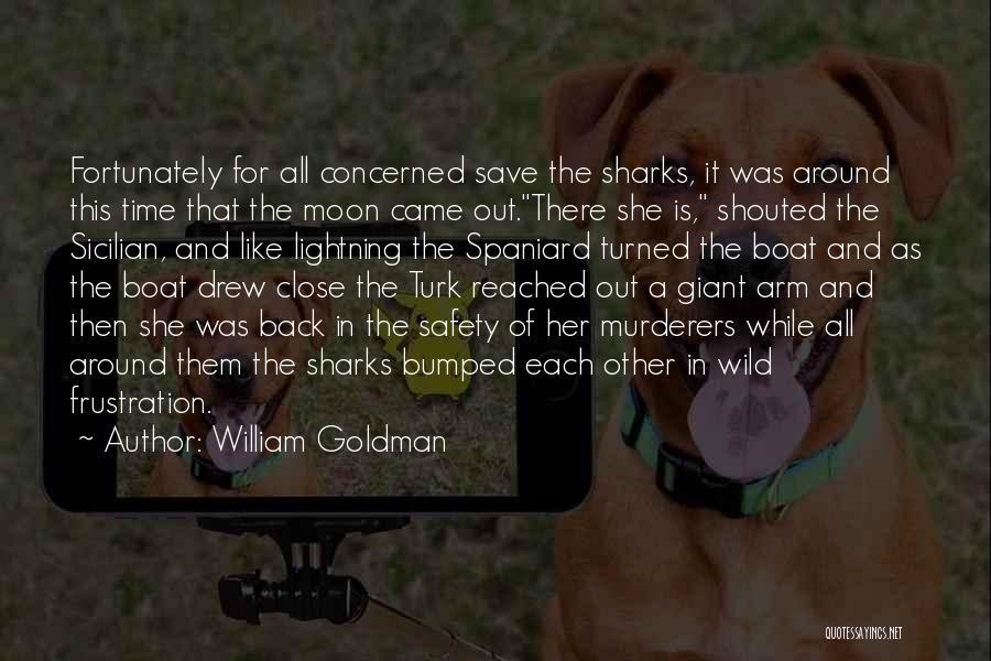 Turk Quotes By William Goldman
