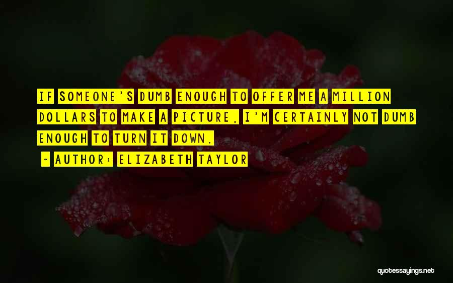 Turn Down Someone Quotes By Elizabeth Taylor