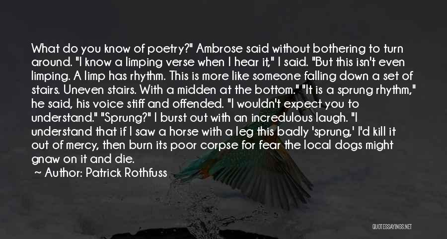 Turn Down Someone Quotes By Patrick Rothfuss